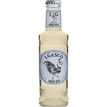 Ginger Beer Gasco italien soft tonic gingembre